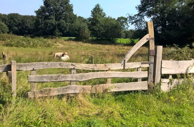 Landschap Noordoost Twente