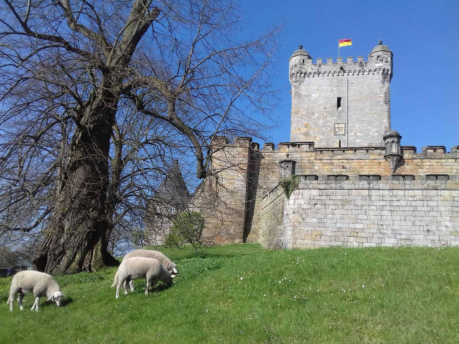 Het kasteel van Bad Bentheim